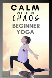 calm within chaos beginner yoga